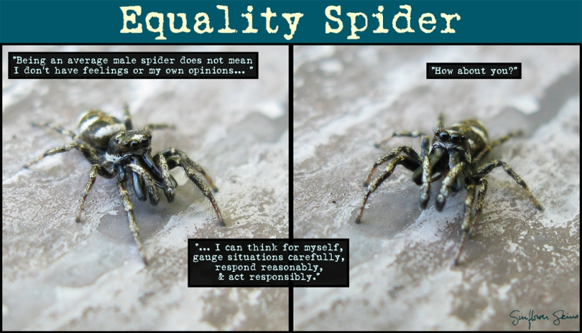 EqualitySpider